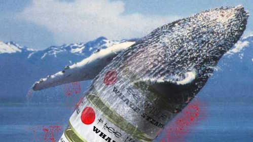 Beyond the Whale – Japan, The West & The Whaling Issue